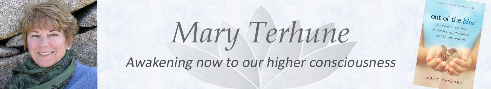 Mary Terhune Website